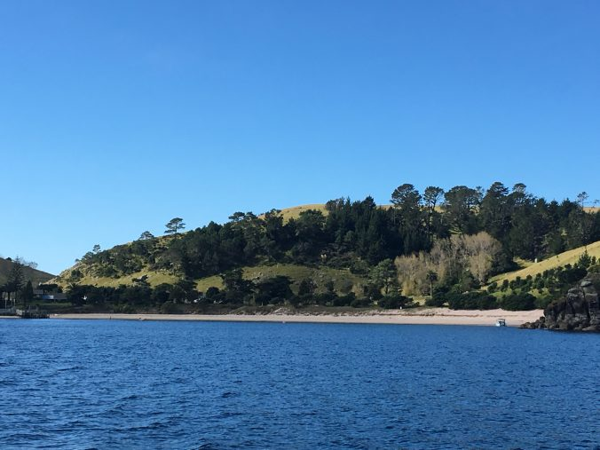 Slipper Island in the Coromandel